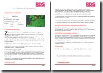 Rapport de stage : opérations douanières d'import et d'export et réalisation de DEB